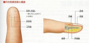 長谷部サロンライブ2018立春0001